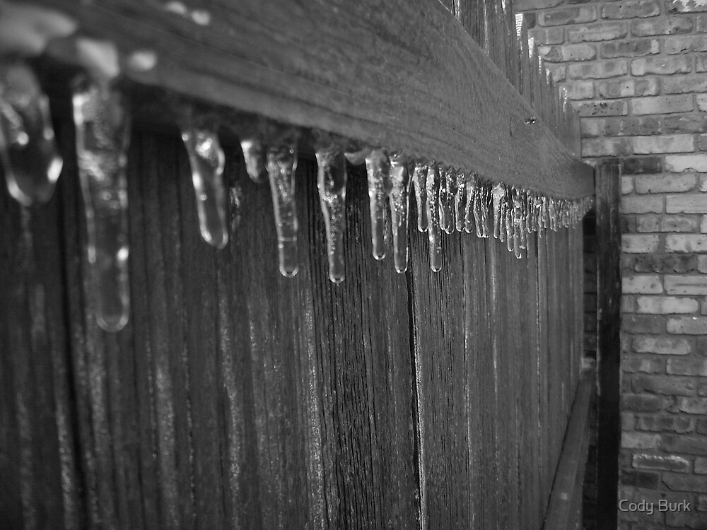 Ice Storm by Cody Burk