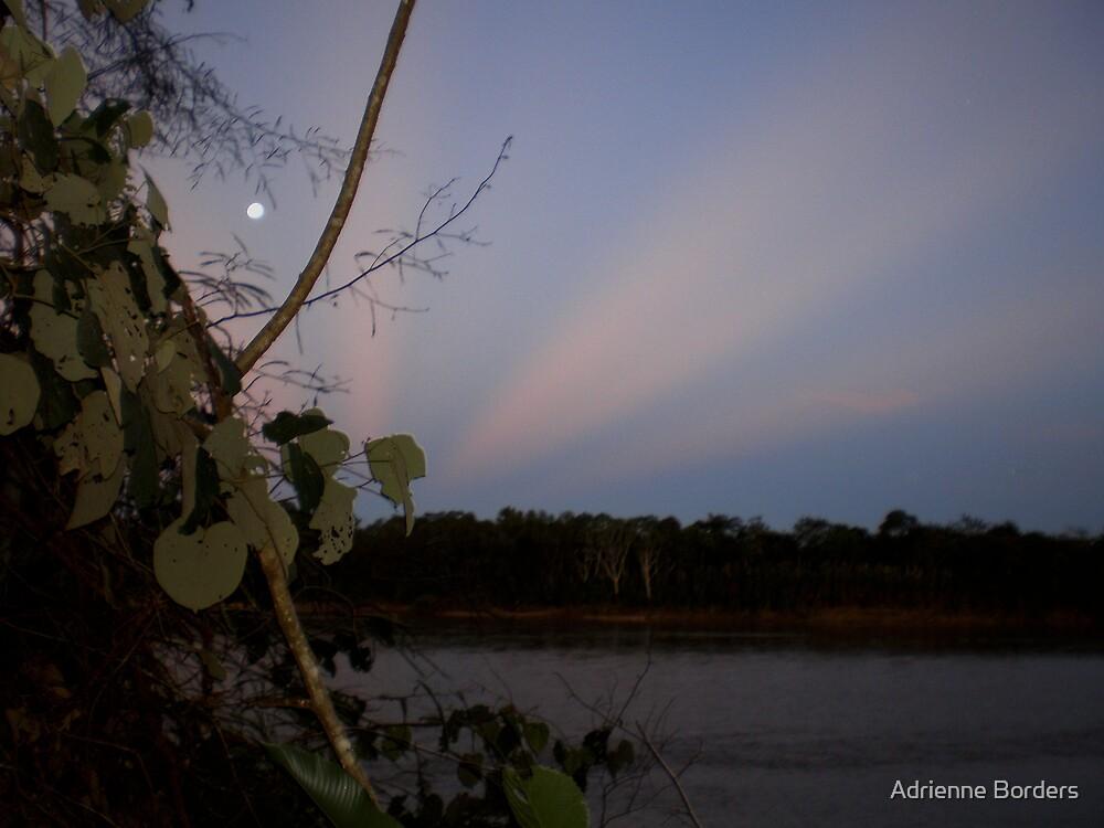 Amazon Sky by Adrienne Borders