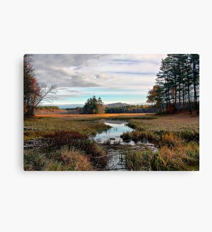 Brownfield Bog - Autumn 2009 Canvas Print