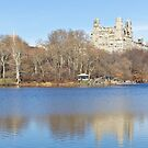 Central Park lake with building and tree reflection by trarbach