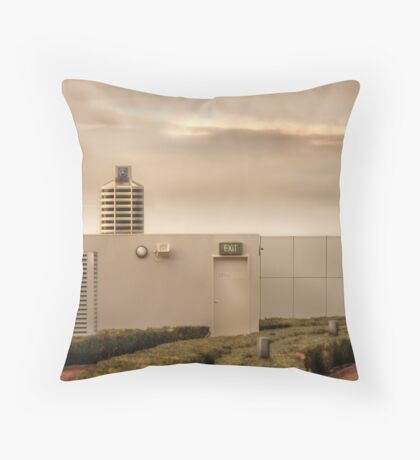 Mercedes Building Throw Pillow