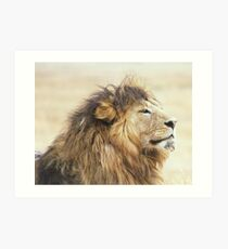 I know I am handsome...you don't need to tell me Art Print