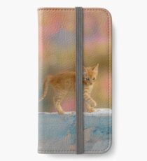Cute Funny Drolly Ginger Cat Kitten iPhone Wallet/Case/Skin