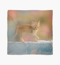 Cute Funny Drolly Ginger Cat Kitten Scarf