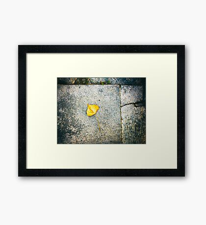 Yellow leaf Framed Print
