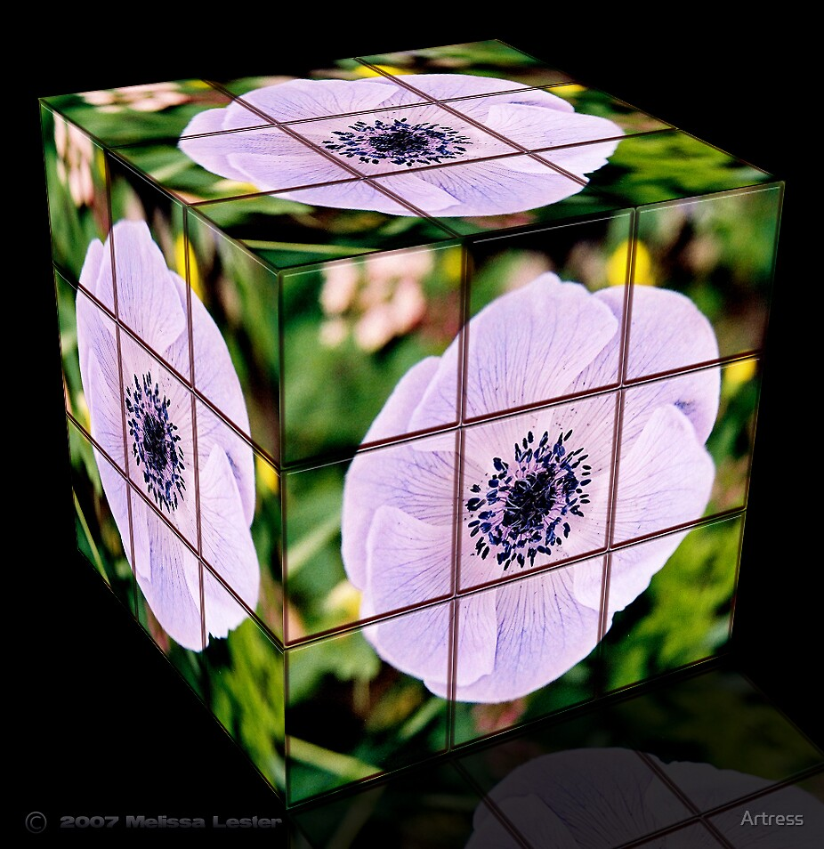 Flower Cube-it by Artress