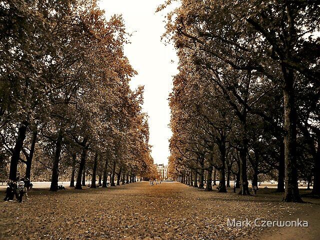 The Park by Mark Czerwonka