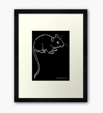 Mouse or Rat Framed Print