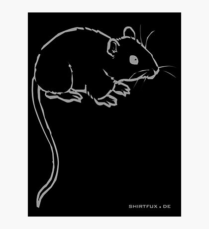 Mouse or Rat Photographic Print