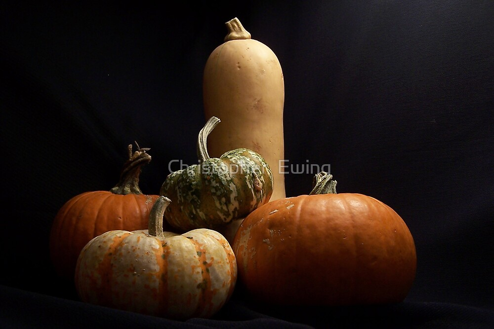 we salute you mighty butternut by Christopher  Ewing