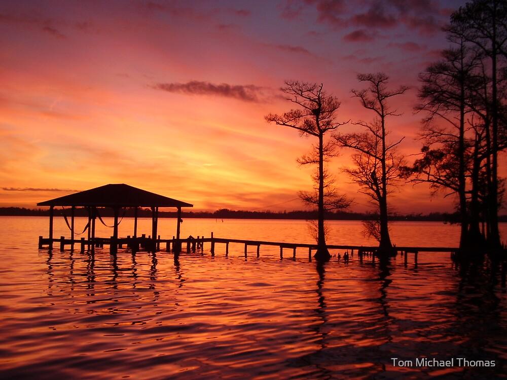 Cedar Glows by Tom Michael Thomas