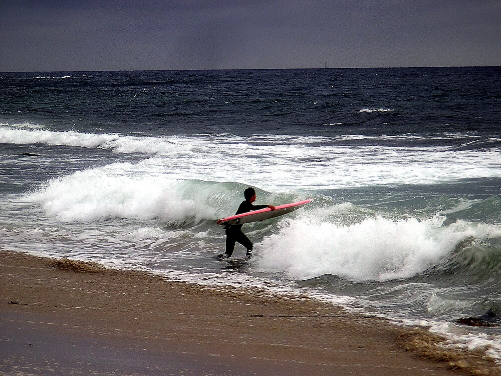 The Surfer by Dianna