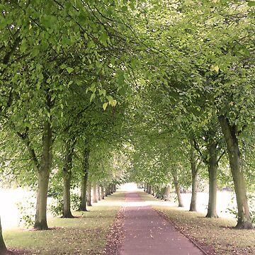 Endless Path by noohoo