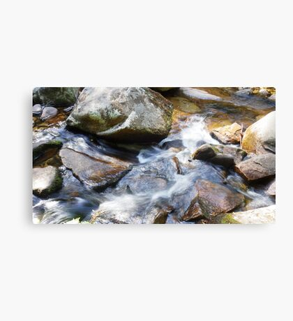 Rocking the Water Canvas Print