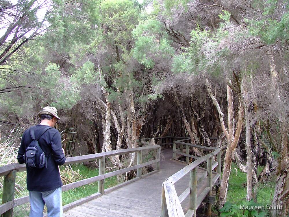 BigSwamp Paperbarks,Bunbury,Western Australia by Maureen Smith