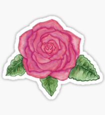 bright pink rose watercolor Sticker