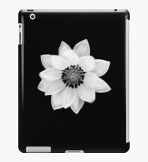 Black and White Gazania [Print and iPhone / iPad / iPod Case] iPad Case/Skin