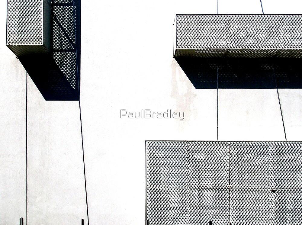 Light and Dark by PaulBradley