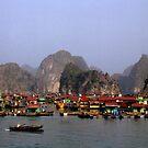 Floating Market, Viêt Nam by Joumana Medlej