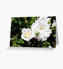 White as Snow Greeting Card