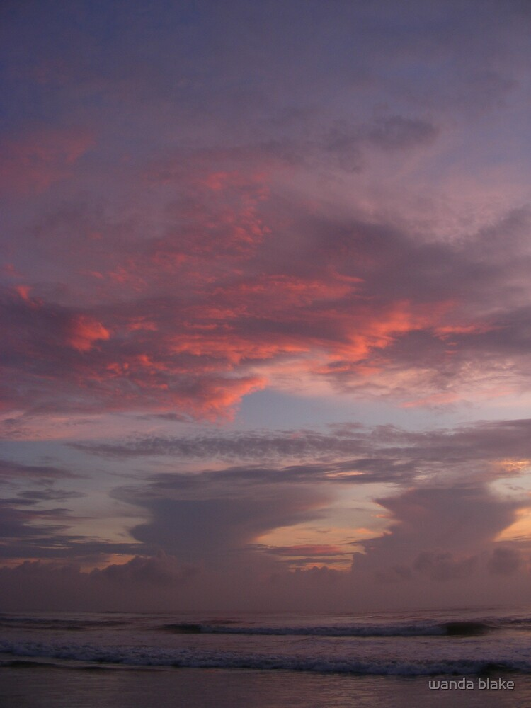 crescent beach by wanda blake