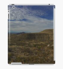 New Mexico iPad Case/Skin