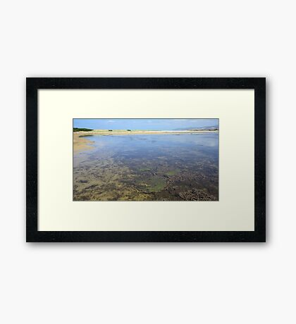 Wetland Waters Framed Print