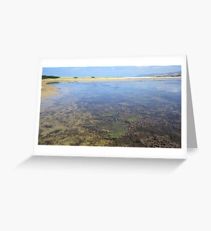 Wetland Waters Greeting Card