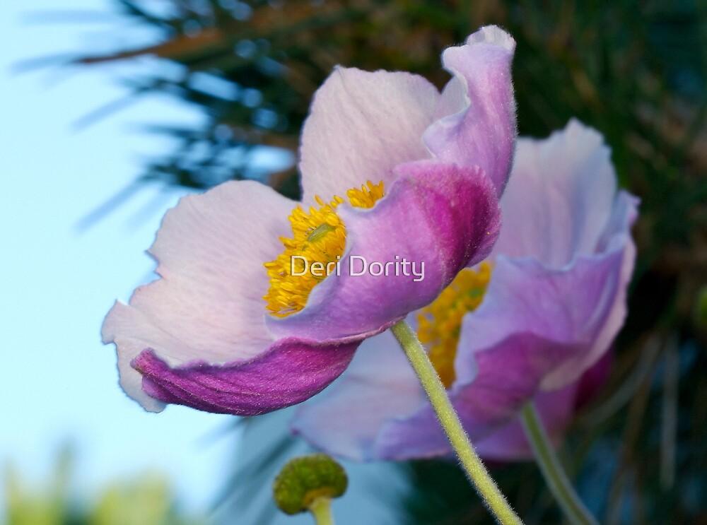 Purple flower by Deri Dority