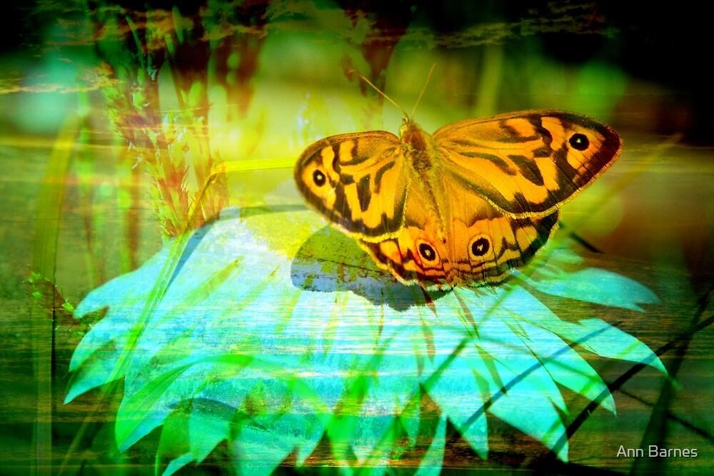Butterfly Art #1 by Ann Barnes