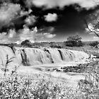 Falls in Flood - Hopkins Falls by Norman Repacholi