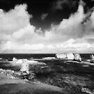 Move - Bay of Islands Australia by Norman Repacholi