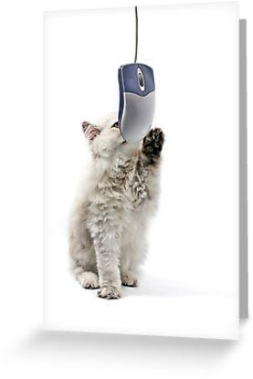 Cat n mouse by Ravet007