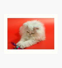 Cute cat 3 Art Print