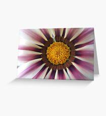 Rasberry Ripple Daisy... Greeting Card