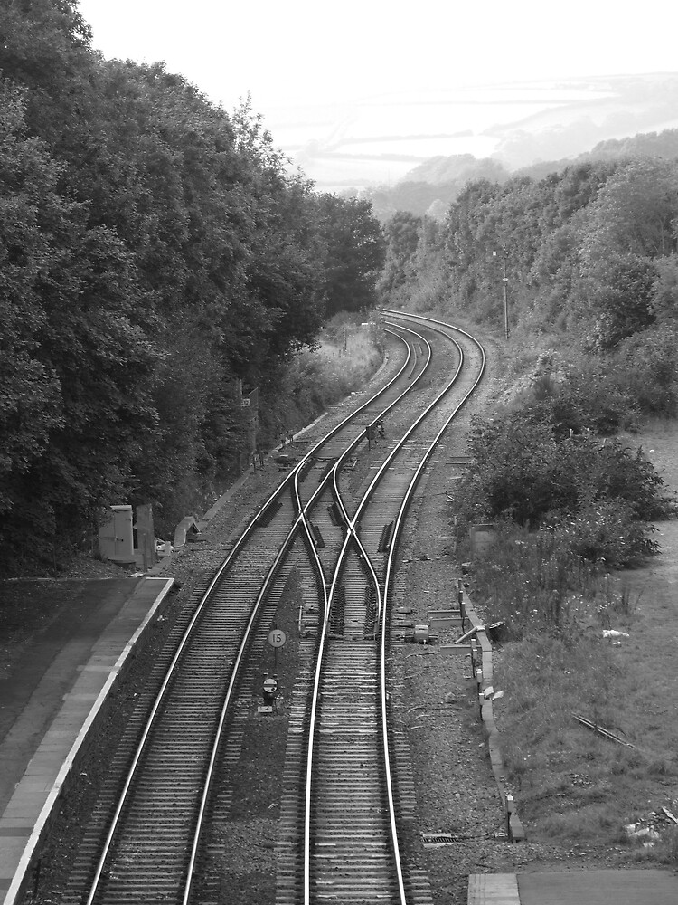 train tracks B&W by matjenkins