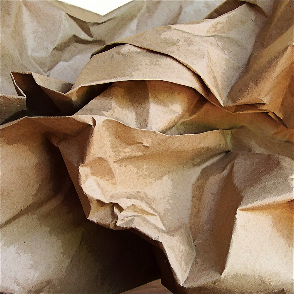 Paper Bag by DigitalMuse