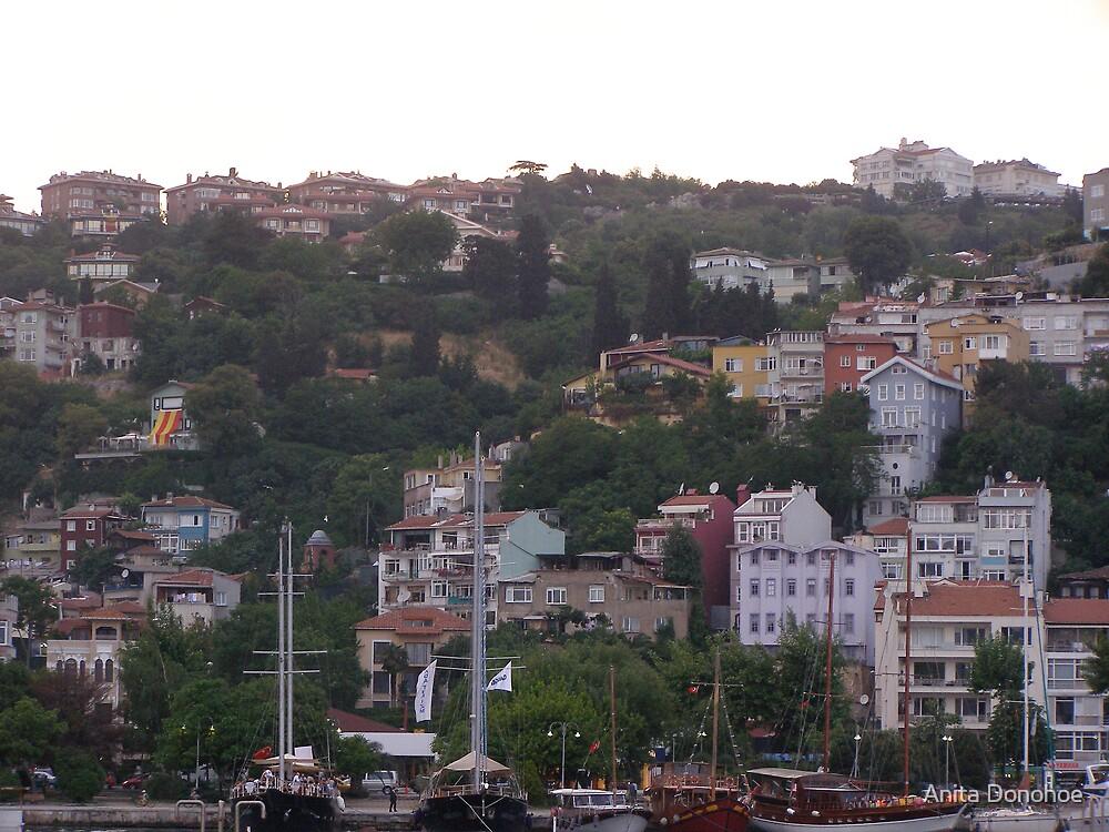 Istanbul Marina Hillside by Anita Donohoe