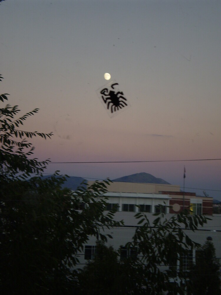 spider eating the moon by madvlad