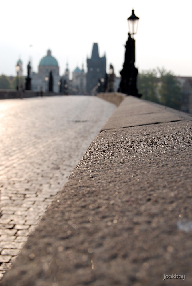 Charles Bridge - Morning by jookboy
