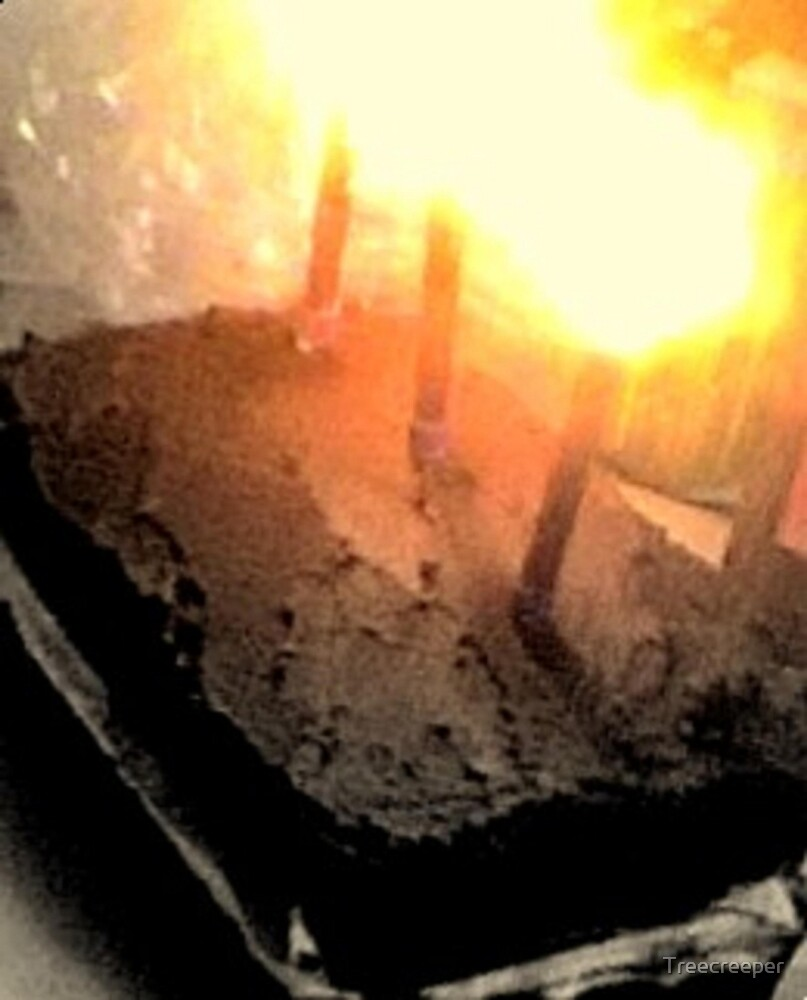 Birthday Wishes by Treecreeper