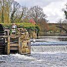 Warwick  Castle Watermill by almaalice