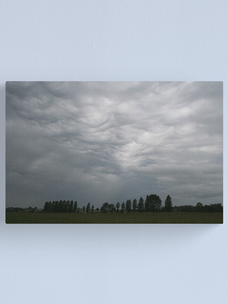 Alternate view of Before storm... Canvas Print