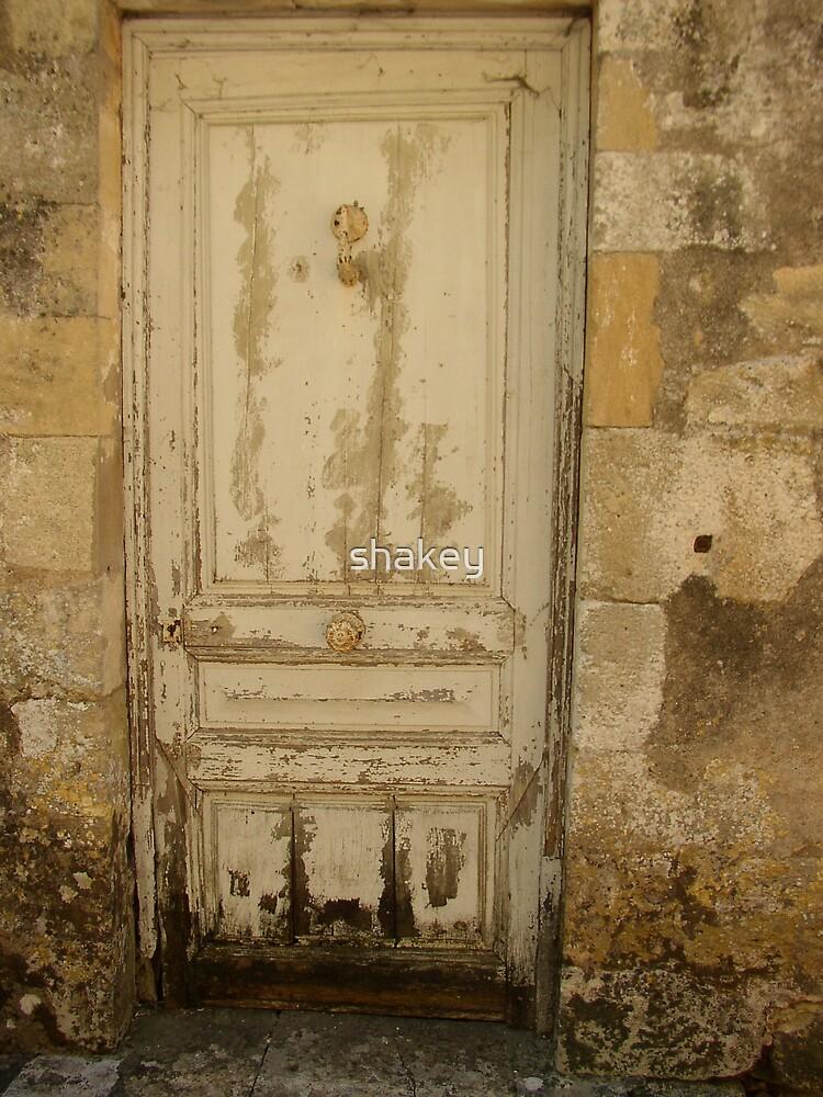 The Door by shakey