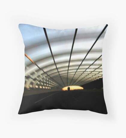Driven #1: Belly Of A Snake Throw Pillow