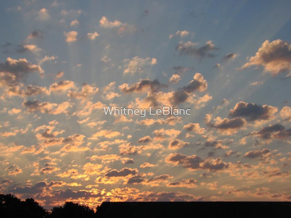 sunrise by Whitney LeBlanc