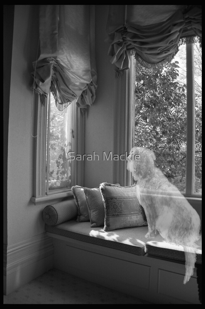 'The Space between us' 2007 by Sarah Mackie