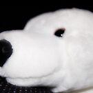 David the Polar Bear by gingerbird