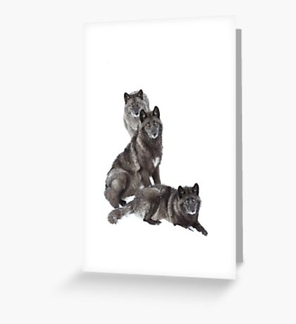 Black wolf family Greeting Card