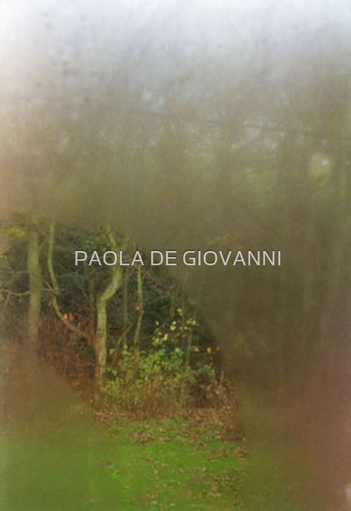 OPAQUE IV by PAOLA DE GIOVANNI